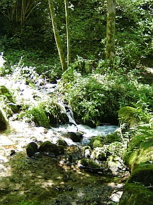 mountain stream calling for contemplation and stillness meditation