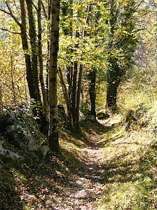 Quiet hillwalking and sightseeing in the French Pyrenees mountains